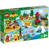 LEGO Duplo - World Animals (10907)