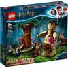 LEGO Harry Potter - La Forêt interdite : la rencontre d