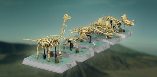 LEGO Ideas Dinosaurs Fossils Skeletons - Natural History Collection.png