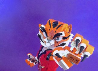 Tigre kung fu panda