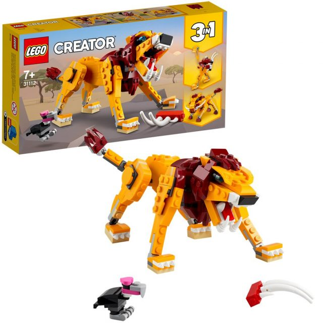 Wild-Lion-31112