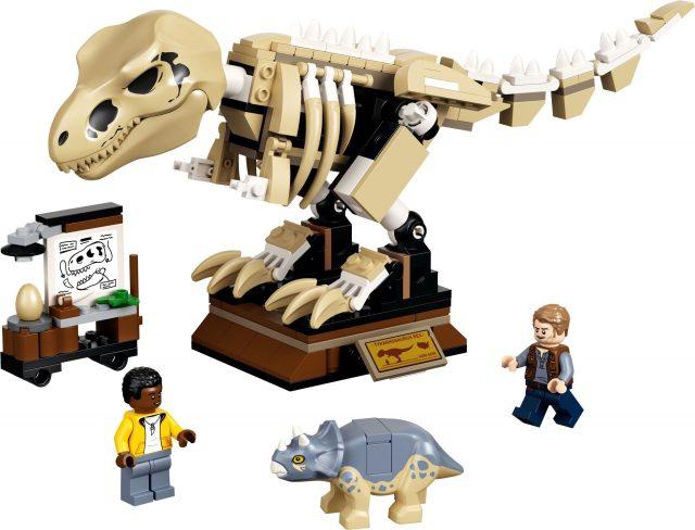 T.-rex-Dinosaur-Fossil-Exhibition-76940-3